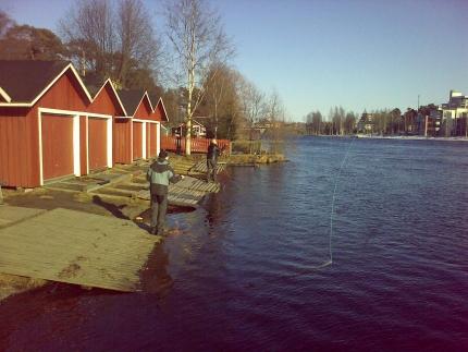 Heittoja_Oulujoella